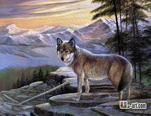 Oil on canvas prints fiercful wolf canvas prints gift for client photo and wall art for home and oofice decoration(China)