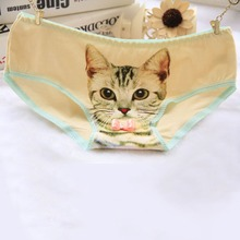 Buy Cute Women Soft Cotton Briefs 3D Printed Animal Cats Panties Knickers Kitten Underwear Panty
