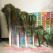 Wholesale 50pcs 25-100 cm Natural Peacock Tail Feathers beautiful natural peacock feathers eyes for DIY clothes(China)