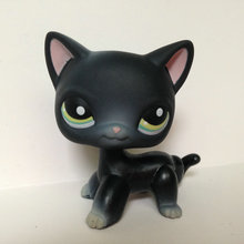 Pet Shop Animal Doll LPS Figure For Child Toy Boy and Gril Short Hair Cat  DWA288