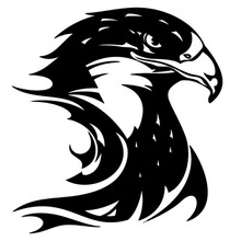 Buy 13.3*14.2CM Fire Flame Eagle Hawk Head Decal Car Sticker Vinyl Car Styling Accessories Black/Silver C9-1400 for $1.12 in AliExpress store
