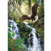 Waterfall eagle 5D DIY diamond painting rhinestones pasting cross stitch diamond embroidery mosaic Rhinestone needlework DP847