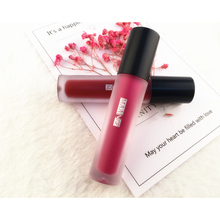 Lip Glaze Lip Gloss Liquid Lipstick 12 Sexy Colors Waterproof Smooth Easy To Wear Long Lasting Moist Matte Lip Paint New Makeup(China)