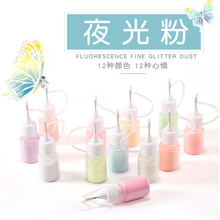 SEXY MIX 1 Bottle 9g Nail Art Fluorescence Fine Glitter Powder Let Your Nail Shine in The Darkness Manicure DIY Luminious Tools