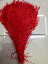 Free shipping wholesale high quality 10pcs Rare red natural peacock feather 25-30 cm / 10-12 inches decorative diy