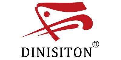 DINISITON