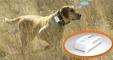 gps chip for dog Web Tracking and Moboile Phone App track gps pet tracker Free Collar(China)