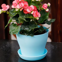 Plastic Flower Pot Succulent Plant Flowerpot For Home Office Decoration 4 Colors Garden Supplies Home Decoration