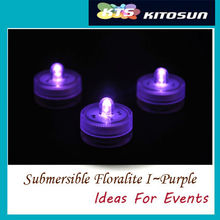 Wholesale Shenzhen Product super bright purple color Small 2pcs Batteries Operated Waterproof Micro Mini LED Battery Lights(China)