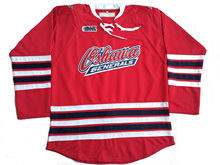 Custom Oshawa Generals withe your name and number Stitched Hockey Red Jersey or Blank Jersey