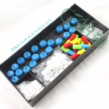 free shipping plastic DNA structure model Atomic structure diagram laboratory equipment