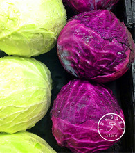 100 Seeds A Bag New Arrival!Early Red Acre Heirloom Cabbage Seeds Non GMO vegetable seeds