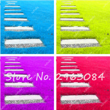 Hot Sale 200Pcs Mul-color Lawn Turf Seed, Fresh Green Soft Runner Turfgrass for Home Park Soccer Golf Place Free Shipping
