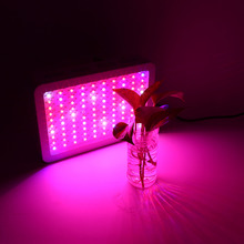 VGEBY 1000W Growth Light For Plants Full Spectrum Hydro LED Grow Light for Medical Plants Fruit EU Plug Led Full Spectrum(China)