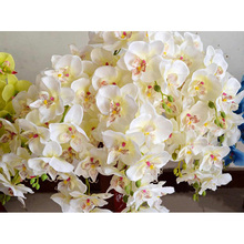 10pcs Fake Flower Phalaenopsis Orchid Artificial Flowers Silk Real Touch Flowers For Home Wedding Decorative Flowers & Wreaths