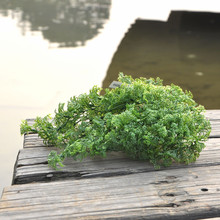 Plastic Hanging Basket Artificial Moss Fern Grass Plant Christmas Home Church Bonsai Decor Floral Arranging Accessories(China)