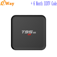 T95M quad core IPTV Box turkey Italy french Germany Europe IP TV Account Sweden UK 6 month code APK wifi set top box 2G 8G 4K 5G