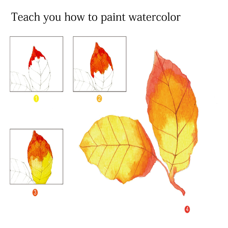 Dainayw 300gms 12Sheets Professional Painting Tutorial Watercolor Paper Painted Water-soluble Book Line draft For Artist Student