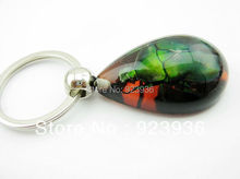 FREE SHIPPING 60 pcs wholesale fashion key-chains big green stone beetle real insect stainsess steel key-rings free shipping(China)