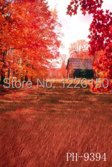 Free scenic sunshine Backdrop PH9394,10*10ft vinyl photography,photo studio wedding background backdrop,fondos fotografia<br>