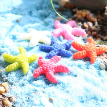 6Pcs/set Cute Small animal models of solid toy Colorful starfish Action & Toy Figures collections Decoration