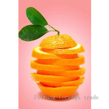 Knitting Needles Diy Diamond Painting Needlework Diy5d Decorative Living Room Oranges Slice Fruit Series Gift Bedroom 20x30cm(China)