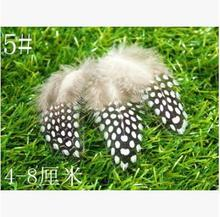 Natural 5# beautiful chicken pearl wing feather 4-8cm 100pcs/pack Mask jewellery/clothing/shoes/hat accessories Free shipping(China)