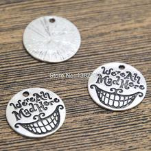 15pcs We're All Mad Here Charms silver tone Alice In Wonderland Cheshire Cat Grin Pendants 20mm(China)