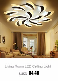 Living Room Ceiling Lamp (2)