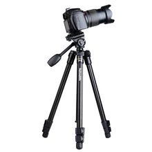 Fashion QingZhuang new model aluminum portable camera tripod , camera monopod with handle head for SLR camera factory direct(China)