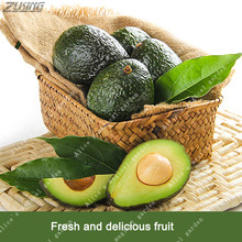 ZLKING 10 Pcs Rare Green Exotic Avocado Seeds New Very Delicious Persea Americana Mill Pear Fruit Seed Home Garden Bonsai Plant(China)