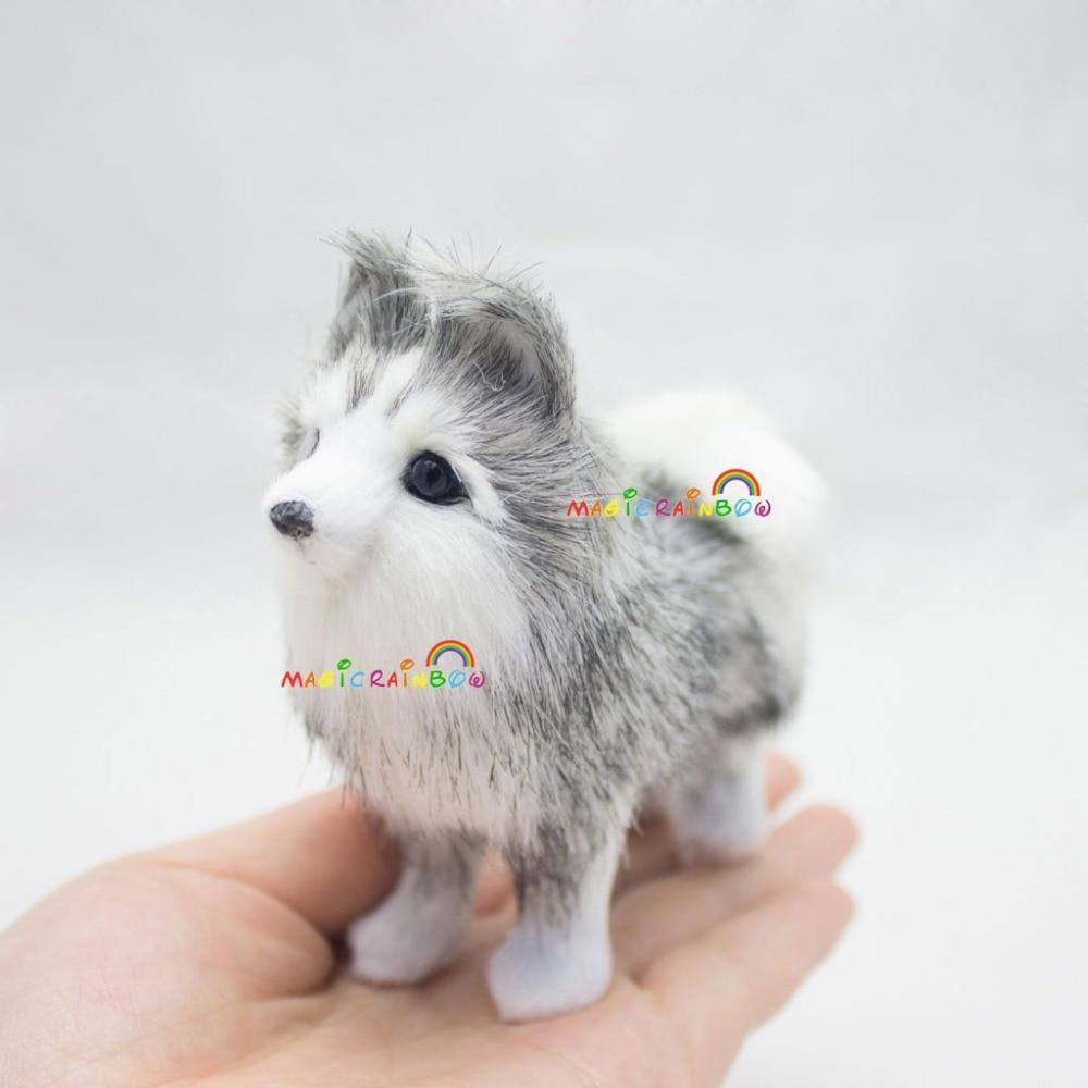 M_Husky dog (10)