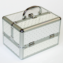 Cheap Perfect Professional Cosmetic Case Portable Women Makeup Case, Korean Style Jewelery Storage Box Caixa Organizadora(China)