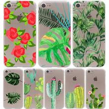 Plants Cactus Banana Leaves Hard Transparent Case for iPhone 7 7 Plus 6 6S Plus 5 5S SE 5C 4 4S