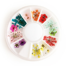 1 Box Natural Dried Flowers Nail Art Decoration Colorful 3d Dry Flower Small / Big Design Manicure DIY Nail Wheel