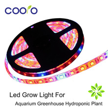 DC12V 5050 Hydroponic Systems Led Plant grow light 300Leds 5M IP65 Waterproof Aquarium Greenhouse Hydroponic Plant Growing Light(China)