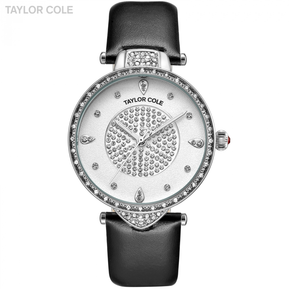 Taylor Cole Luxury Brand Watches for Women Silver Case Black Strap Band Casual Watches Relogio Feminino Women Wristwatches/TC112<br>