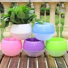 Gardening Flower Pots Creative Wall Lazy Flower Pots Color Plastic Flower Plate Color multi - Meat Spherical Plastic Flower Pots