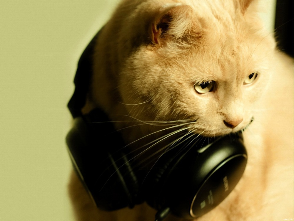 Online Get Cheap Headphone Art Aliexpress Com Alibaba Group