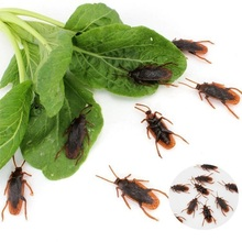 New20pcs/lot Prank Funny Trick Joke Toys Special Lifelike Model Simulation Fake Rubber Cockroach Cock Roach Bug Roaches Toy