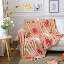 2017Autumn winter's new flannel blanket with warm and thick coral wool blanket/150x200/180*200/200x230/(China)
