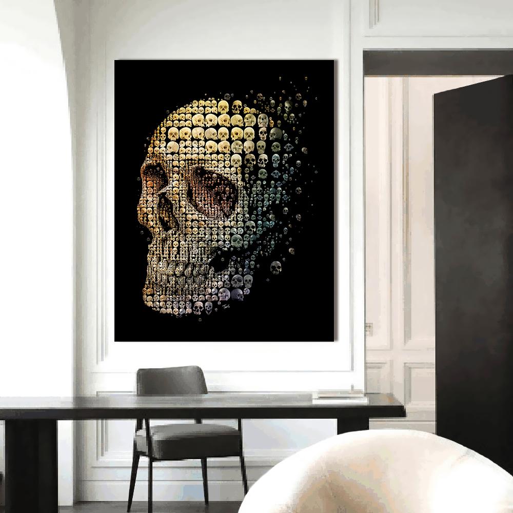 Skull evolution-2