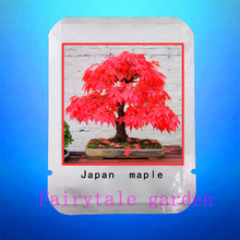 Maple seeds,20pcs/bag Japanese Maple,red maple tree,rare bonsai flower seeds,professional pack seeds,plant for home garden(China)