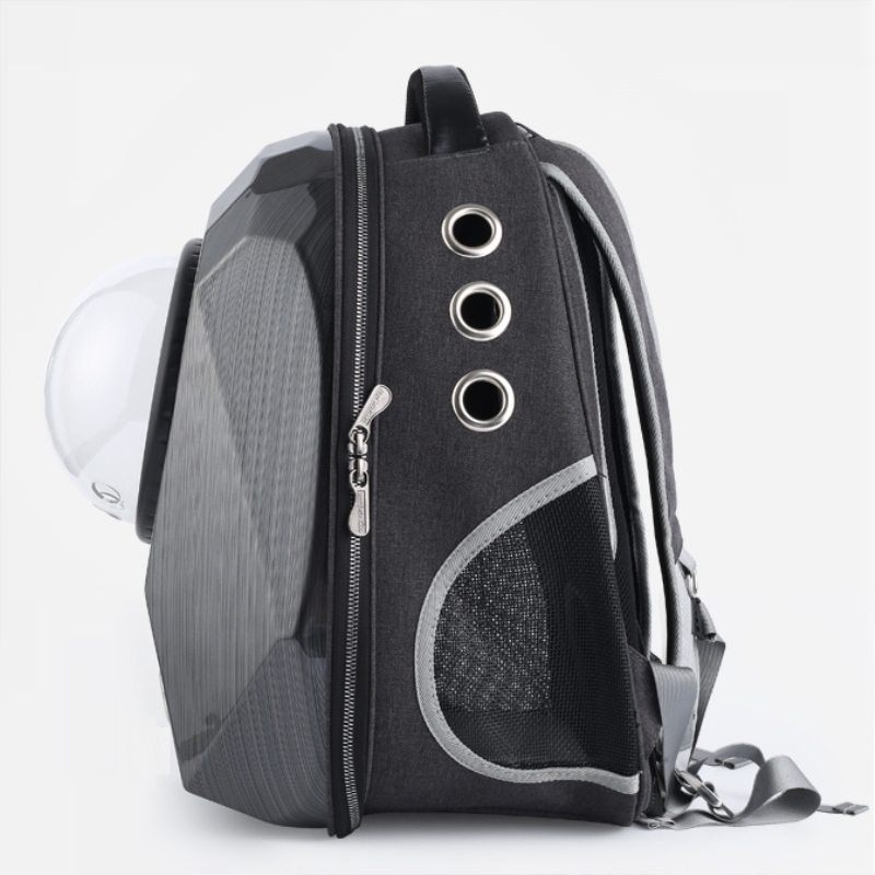 dog backpack carrier (3)