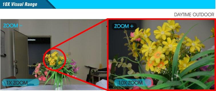 10X Motorized Zoom Visual Range
