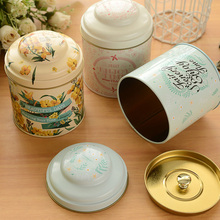 5pcs/Lot Metal Storage Box Tea Box Kitchen Organizer Tin Box For Candy Coffee Small Things ,Home Decoration Sealed Storage Cans(China)