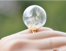 10pcs/lot 16mm Real dandelion ring ,dandelion seed jewelry , good luck ring , dandelion wish(China)