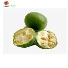 GMP HACCP KOSHE certified Luo han guo extract powder free samples , natural sweetner monk fruit extract 900g/lot