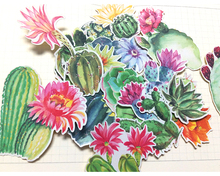 18pcs Creative cute Self-made cactus meaty plants Stickers scrapbooking stickers/decorative sticker /DIY craft photo albums