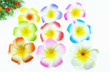 50 high quality 9 COLOR you pick Foam Frangipani Flower Hawaiian Plumeria flower WEDDING DECOR(China)